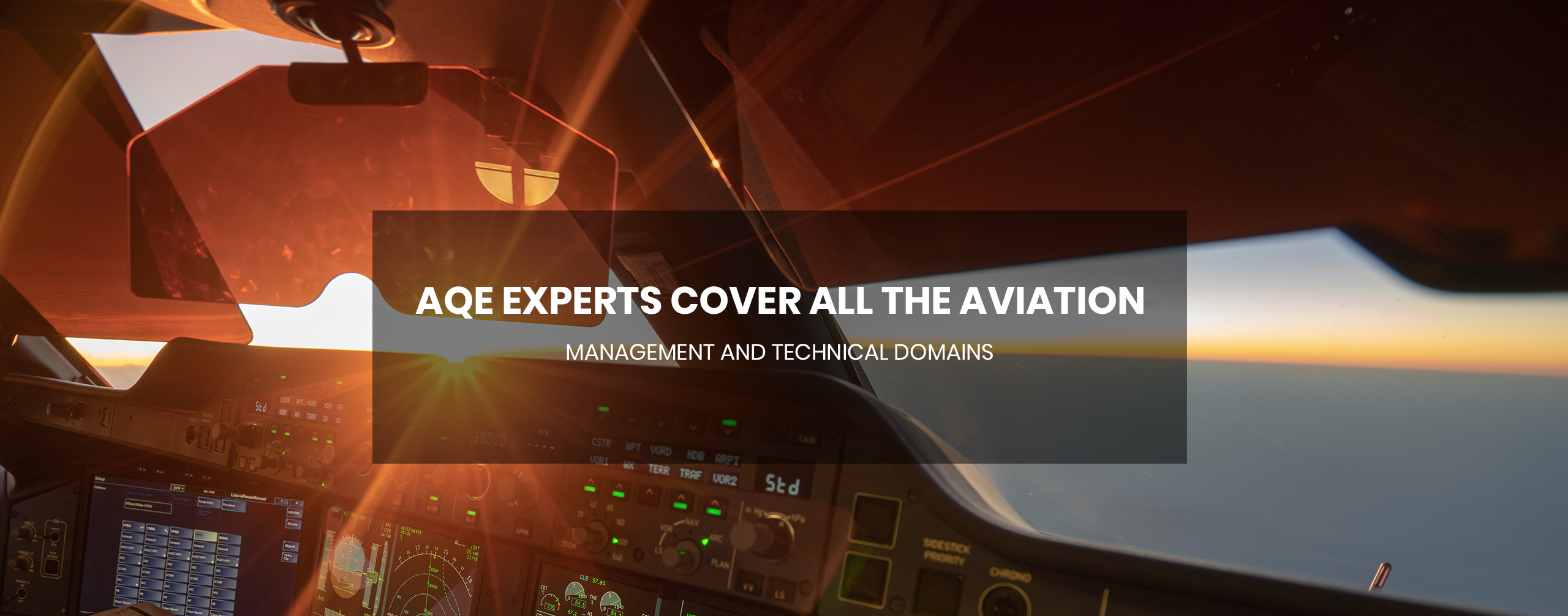 AQE experts cover all the aviation management and technical domains